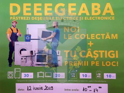 Campanie De Colectare A Deșeurilor La Târnava